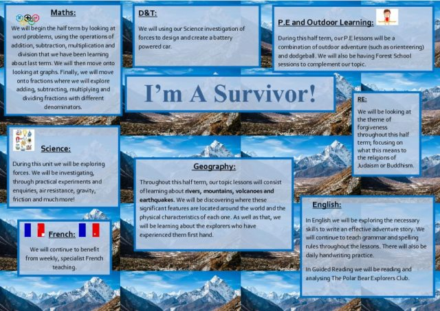 thumbnail of I'm A Survivor Topic Web